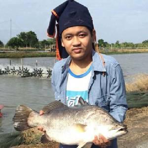"""จบรัฐศาสตร์เลือกเลี้ยง""""ปลากะพง"""" หนุ่มวัย 24 ปี สานฝันสร้างฟาร์มยั่งยืน"""