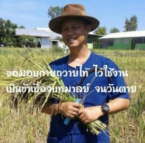 ดอกเตอร์บนแปลงเกษตร ต้นแบบความสำเร็จของคนปลูกข้าว : ดร.รณวริทธิ์ ปริยฉัตรตระกูล