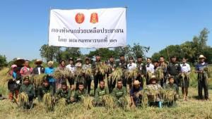 ทหารขอนแก่นและนครพนม จัดกำลังพลช่วยชาวนาเกี่ยวข้าวยามลำบาก