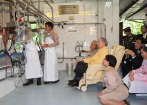 """อย.เร่งคุมการผลิต """"นม"""" ให้ได้มาตรฐาน สืบสานพระราชปณิธาน """"พระบิดาแห่งการโคนมไทย"""""""