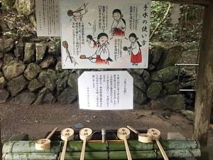 7 สถานที่ กิน-นอน-เที่ยว สัมผัสวิถีธรรมชาติ ครบทุกอารมณ์ในไซตามะ