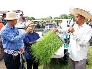 นอภ.สะเดา เปิดโครงการส่งเสริมการทำนาโยนให้เกษตรกรปาดังฯ ช่วยลดต้นทุนการผลิต