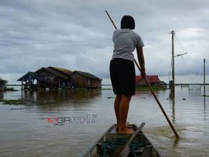 น้ำท่วมพัทลุงยังไม่พ้นวิกฤต พื้นที่ ต.ทะเลน้อย อ.ควนขนุน ฝูงควายเริ่มทยอยล้มตาย