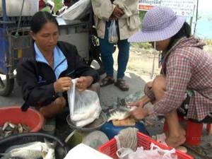 ชาวบ้านจับปลาจากแม่น้ำตรังที่ทะลักท่วม นำขายสร้างรายได้วันละหลายพันบาท