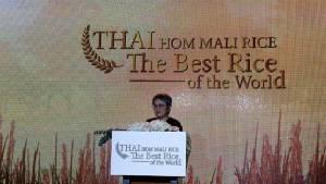 """""""พาณิชย์"""" ใช้จังหวะช่วงเป็นแชมป์ข้าวที่ดีที่สุดในโลก เตรียมจัดโรดโชว์โปรโมตและขายข้าวไทย"""