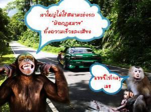"""ดราม่าหนักมาก!!! """"เที่ยวทั่วไทยไร้จิตสำนึก"""" รวมวีรกรรมเด็ดดวง สนั่นโซเชียล"""