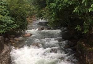 """อยากได้น้ำต้องสร้างป่า! คนเมืองคอนลั่นต้าน """"อ่างเก็บน้ำวังหีบ"""" 1,600 ล้าน ไถป่าสร้างเขื่อนเพื่อใคร!?"""