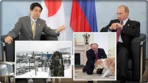 """InClips:สื่อแดนปลาดิบเดือด """"ปูติน"""" ปฎิเสธลั่น """"รัสเซียไม่เคยทับซ้อนดินแดนกับญี่ปุ่น"""" แถมข่มขู่ """"โตเกียวต้องจำนนรับสนธิสัญญาสันติภาพโซเวียต-ญี่ปุ่น มรดกสงครามโลกครั้งที่ 2"""" งานยากอาเบะรับคุยนางาโตะซัมมิต"""