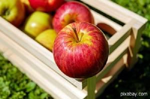 6 ผักผลไม้ ต้องกินประจำ ช่วยลดน้ำหนักได้จริง
