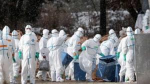 จีนพบผู้ติดเชื้อไข้หวัดนก 3 รายรวดในสัปดาห์เดียว สั่งห้ามนำเข้าสัตว์ปีกจาก 60 ประเทศ