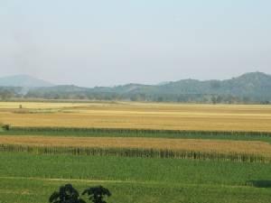 """""""ภิรมย์ภักดี"""" ปั้นพีบีวัลเล่ย์เชียงราย ดันท่องเที่ยวเกษตรเต็มตัว"""