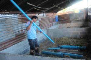 อาชีพใหม่เกษตรกรชาวกาฬสินธุ์ทำฟาร์มเลี้ยงหนูนา โกยเงินเกือบครึ่งแสน(ชมคลิป)