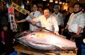 """อึ้ง! เจ้าของเครือร้านซูชิดังญี่ปุ่นประมูลซื้อทูน่าตัวเดียว """"74 ล้านเยน"""" รับปีใหม่"""
