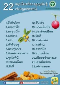 สมุนไพรไทย 22 ชนิดเสี่ยงสูญพันธุ์ ประกาศคุ้มครองและควบคุม 7 ชนิด