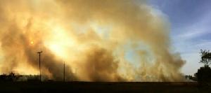 ไฟไหม้ป่าหญ้าข้างทางในตราด เสียหายกว่า 20 ไร่