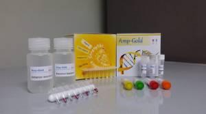 AMP-Gold ชุดตรวจกุ้งตายด่วน ผลงานการันตีรางวัลสภาวิจัยแห่งชาติ