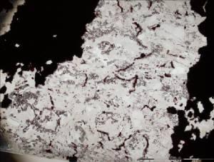 ฟอสซิลแบคทีเรียเก่าแก่ที่สุด ชี้กำเนิดชีวิตบนโลกย้อนไปถึง 4.3 พันล้านปี