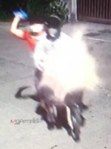 อุกอาจ! 2 คนร้ายขี่ จยย.ปาไปป์บอมบ์ใส่หน้าบ้านตำรวจที่ปัตตานี โชคดีระเบิดด้านรอดหวุดหวิด
