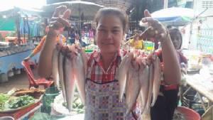 ชาวประมงนครพนมยิ้มออก หลังฝนตกออกจับปลาขายทำเงินเข้ากระเป๋า (ชมคลิป)