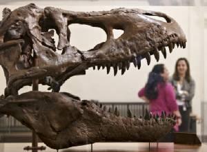 Scientists uproot dinosaur family tre