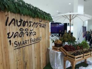 เมืองจันท์นำร่อง เปิดตัวขายสินค้าเกษตรทางออนไลน์