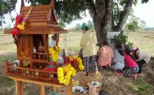เงินสะพัดทั้งตำบล เลขเด็ดโคนต้นมะม่วงให้โชคชาวนครพนม4งวดติด