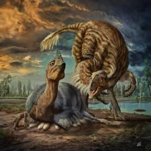 """ไขปริศนาได้เสียที """"ลูกมังกรจากจีน"""" คือไดโนเสาร์ชนิดใหม่"""