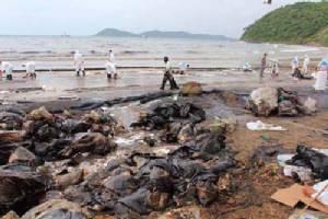 ส่องทะเลไทยหลังน้ำมันรั่วซ้ำซาก ปลาหน้าดินป่วย- ตาย 70%