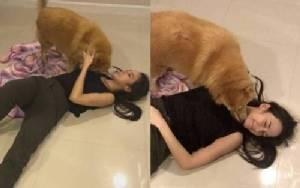 """เอ็นดู! """"อั้ม พัชราภา"""" ลงไปนอนเกลือกกลิ้งกับพื้นเล่นกับน้องหมา (คลิป)"""