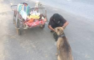 รักสุดซึ้ง..หนุ่มใจสลายหอบเถ้ากระดูกเมีย หมา 2 ตัว เดินจากตรังถึงสุโขทัย