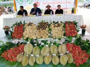 ระยอง เปิดตลาดผลไม้คุณภาพแห่งใหม่ เพิ่มจุดจำหน่ายผลไม้ให้ประชาชน