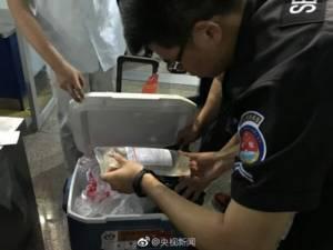 79 นาทีแลก 1 ชีวิต! ชาวเน็ตชื่นชมผู้โดยสายจีนยอมบินดีเลย์เป็นชั่วโมง นั่งรออวัยวะปลูกถ่ายให้ผู้ป่วยโรคหัวใจ