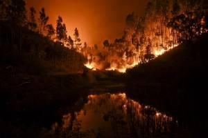 'ไฟป่าโปรตุเกส' อาละวาดตายแล้วอย่างน้อย 62   ส่วนใหญ่ถูกเผาสิ้นชีพบนรถตัวเอง