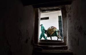 """งานที่น่ายกย่องของคนและ """"ลาเก็บขยะ"""" ที่เมืองมรดกโลก"""