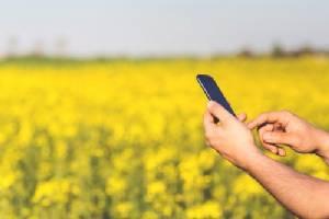 "Digital Transformation สร้างหรือทำลาย ""เกษตรกร"""