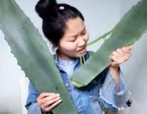 หวิดดับ! สาวจีนไลฟ์สดกินพืชมีพิษ นึกว่าเป็นว่านหางจระเข้ (ชมคลิป)