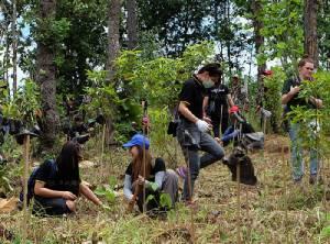 """ฟื้นป่าภาคเหนือ ปลูกจิตสำนึก กับ """"ไฟล์ท ออฟ เดอะ กิบบอน"""""""