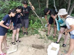 ทีมสัตวแพทย์กรม ทช.ขึ้นเกาะทะลุ จ.ประจวบฯ ดูสุขภาพลูกเต่ากระรังแรก