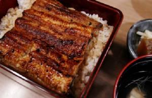 New hope for endangered eels, Japanese summer delicacy
