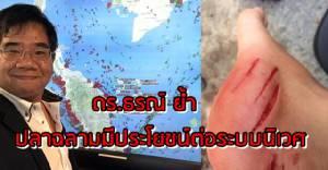 """อย่าเกลียดฉลาม ! """"ดร.ธรณ์"""" วอนคนไทยเข้าใจฉลามซะใหม่"""