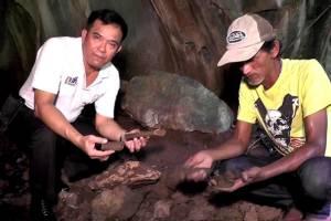 ตะลึง! ชาวบ้านที่ชุมพรหาขี้ค้างคาวในถ้ำ กลับเจอกระดูกมนุษย์โบราณ