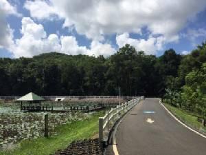"""จังหวัดชลบุรีจัด """"รวมใจรัก ปั่นเพื่อพ่อ"""" เปิดเส้นทางจักรยานเพื่อการท่องเที่ยว """"ป่าแห่งรัก"""""""