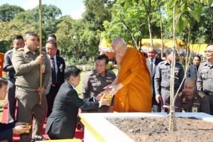 """รู้ไหมว่าประเทศไทยเหลือพื้นที่ป่าเพียงแค่ 31% ปตท.ร่วมกดปุ่มสตาร์ท """"ต้นกล้าจิตอาสา รวมพลังศรัทธา ปลูกป่าทั่วแผ่นดิน"""""""