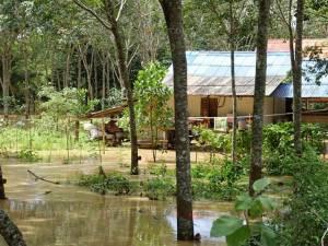 เกิดเหตุน้ำป่าเอ่อล้นตลิ่งเข้าท่วมหมู่บ้านใน อ.สะเดา