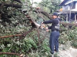 ฝนถล่มชุมชนห้วยขะยุง จ.อุบลฯ บ้านเรือนเสียหายร่วม 20 หลังคาเรือน