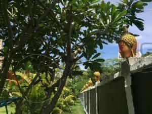 สะเทือนใจกันทั่ว..ชาวบ้านร้องฝรั่งใช้เศียรพระแต่งกำแพง-ทางเดินบ้านเชียงใหม่ (ชมคลิป)