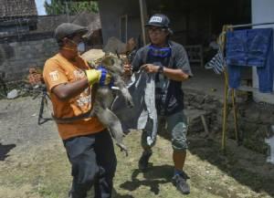 """ยอดอพยพหนี """"ภูเขาไฟปะทุ"""" ในบาหลีพุ่ง 144,000 คน ทางการวอน ปชช.ที่อยู่นอกเขตเสี่ยงภัย """"กลับบ้าน"""""""