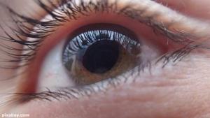 """รู้ทัน 5 สัญญาณเตือนว่า """"ตา"""" อาจจะบอด"""