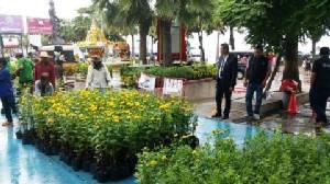 ผกก.พัทยา รวมพลังชาวบ้าน เนรมิตดอกดาวเรืองเหลืองอร่ามหน้าโรงพักพัทยา