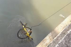 ต่ำตม! โลกโซเชียล รุมด่าคนนำจักรยาน Bike Sharing in Phuket ทิ้งลงคลอง